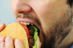 Burger, γρήγορο φαγητό Στοκ Εικόνα