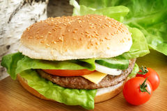 burger γρήγορο φαγητό Στοκ Εικόνες