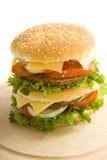burger δάσος Στοκ φωτογραφία με δικαίωμα ελεύθερης χρήσης