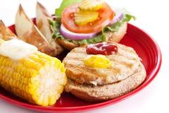 burger εύγευστη υγιής Τουρκί&a στοκ φωτογραφία με δικαίωμα ελεύθερης χρήσης