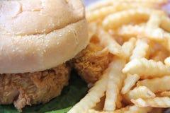 Burger και τηγανητά κοτόπουλου Στοκ Εικόνες