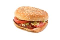 burger κοτόπουλο Στοκ φωτογραφίες με δικαίωμα ελεύθερης χρήσης