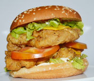 Burger κοτόπουλου - μεγάλο juicy burger στο άσπρο υπόβαθρο - Rounders Στοκ Εικόνες