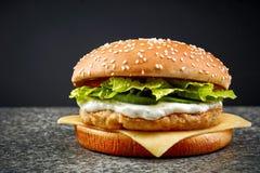 burger κοτόπουλο φρέσκο Στοκ φωτογραφία με δικαίωμα ελεύθερης χρήσης