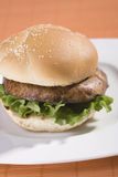 burger μανιτάρι Στοκ φωτογραφίες με δικαίωμα ελεύθερης χρήσης