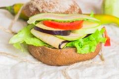 burger με τα λαχανικά Στοκ φωτογραφία με δικαίωμα ελεύθερης χρήσης