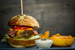 Burger με τα τηγανητά Στοκ φωτογραφία με δικαίωμα ελεύθερης χρήσης