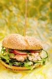 Burger σολομών Στοκ Εικόνες