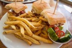 burger τηγανιτές πατάτες μίνι Στοκ Εικόνα