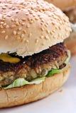 Burger της Τουρκίας Στοκ φωτογραφία με δικαίωμα ελεύθερης χρήσης