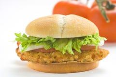 burger τραγανή ντομάτα κρεμμυδ&iota Στοκ εικόνες με δικαίωμα ελεύθερης χρήσης