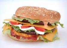 Burger Royalty Free Stock Photos