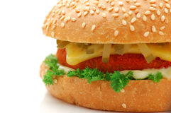 Burger. On a white background royalty free stock image