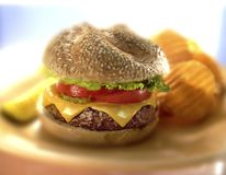 Burger. With chips on plate with topping Stock Image
