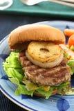 burger Στοκ Φωτογραφία