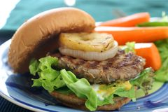 burger Στοκ Εικόνα