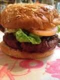 Burger Στοκ Εικόνες