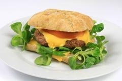 Burger Στοκ εικόνα με δικαίωμα ελεύθερης χρήσης