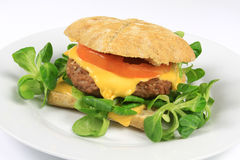 Burger στοκ εικόνες με δικαίωμα ελεύθερης χρήσης