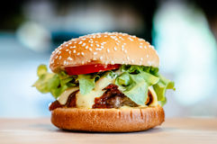 Burger_02 Foto de Stock Royalty Free