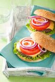 Burger with beef patty cheese lettuce onion tomato Royalty Free Stock Images