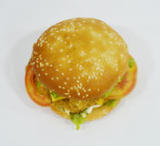 Burger - Big juicy burger on white background - Rounders Royalty Free Stock Image