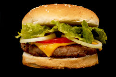 Burger on black. Burger with cheese, on black background royalty free stock photography