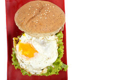 Burger with black pepper Stock Images