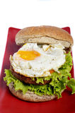 Burger with black pepper Stock Photo