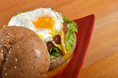 Burger with black pepper Royalty Free Stock Images
