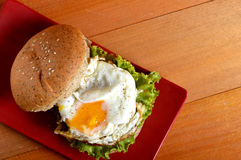 Burger with black pepper Stock Photos