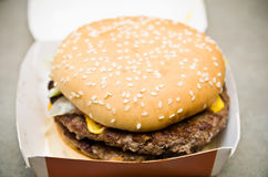 Burger in Box Stock Photography