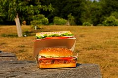 Burger in a box Royalty Free Stock Images