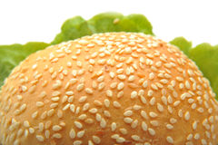 Burger Bread Royalty Free Stock Photos