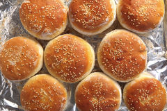 Burger buns from above Royalty Free Stock Photos