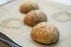 Burger buns. Cooked burger buns with sesam seeds Royalty Free Stock Photos