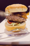 Burger with cheese Royalty Free Stock Photos