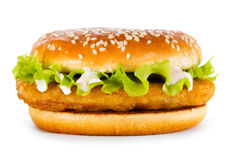 Burger with chicken. On white background royalty free stock photography