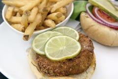 Burger Crabcake με τη μακροεντολή κινηματογραφήσεων σε πρώτο πλάνο τηγανιτών πατατών Στοκ Εικόνα