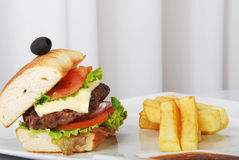 Burger with french fries Royalty Free Stock Photos
