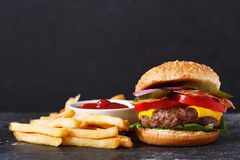 Burger with french fries stock images