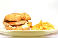 Burger with french fries Stock Photo