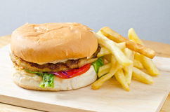 Burger with french fries Royalty Free Stock Image