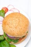 Burger with fresh salad, top view Royalty Free Stock Photos