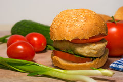 Burger with fresh vegetables Stock Photos
