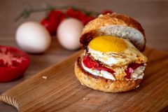 Burger with fried egg stock photo
