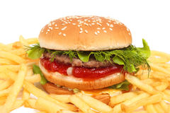 Burger and fries Stock Photography