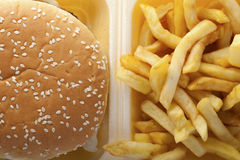 Burger and fries in a box. royalty free stock photo