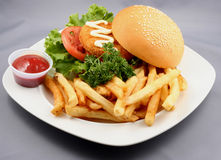 Burger and Fries Combo. Plated serving of a hamburger and French fries combo Royalty Free Stock Photo