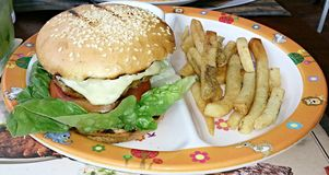 Burger with fries Royalty Free Stock Image